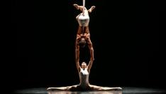 dallas black dance theater 2