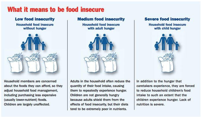 Food Insecurity